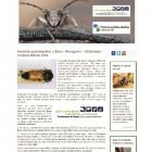 Kako vam izgleda naša NOVA web stranica posvećena SAPROKSILNIM insektima?